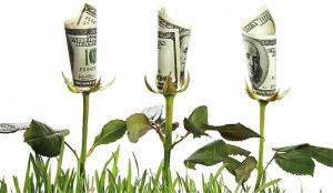 dolar verde
